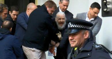 assange detenido