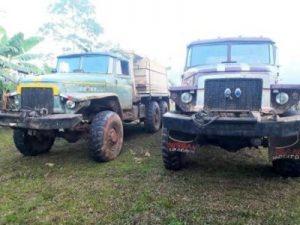 camiones ilegales de madera