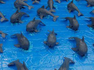 vaquita marina en extinción